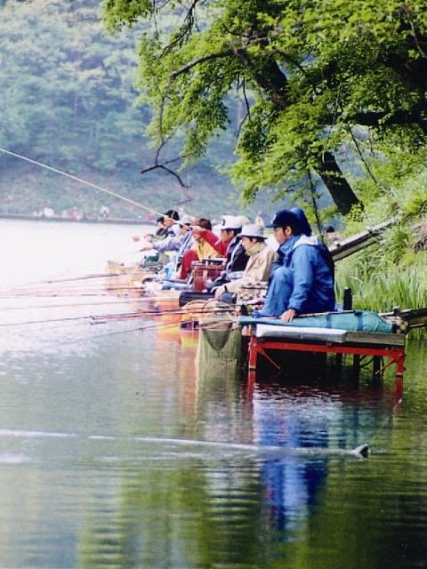 みどり湖の見どころ・ヘラブナ釣り情報とアクセス方法