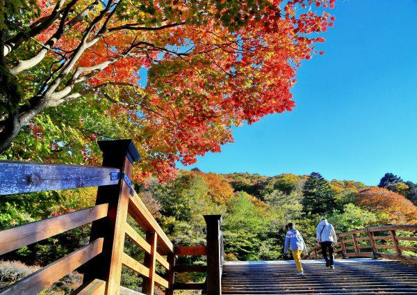 秋色の木曽の大橋