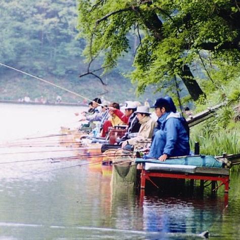 ヘラブナ釣り大会
