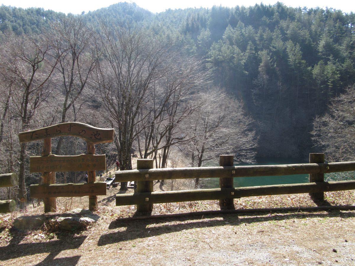 山ノ神自然園
